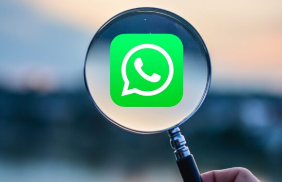 whatsapp scammers