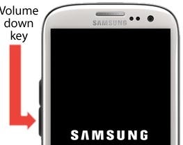 Samsung Galaxy S3 Stuck On The Welcome Message